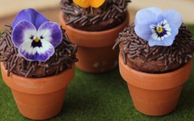 Gluten-Free Mini Flower Pot Brownies