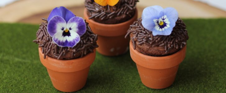 Gluten-Free Mini Flower Pot Brownies